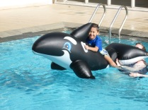 Jacob on a giant inflatable whale in our pool.