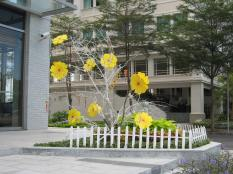 The Mai flowers in front of their hotel.