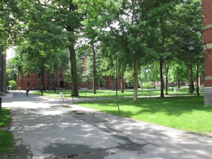 My last view of Harvard Yard