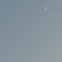 photo 2 (7)