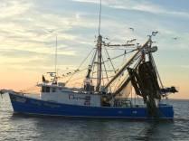 shrimp fishing boat 1