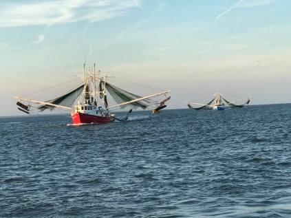 shrimp fishing boat 2