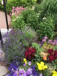 garden sense 4
